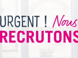 Un (e) Business développeur / Product Manager